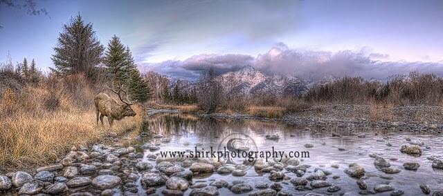 Yellowstone-Landscape-Photography