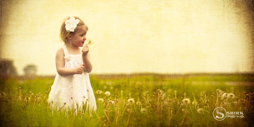 Shirk-Photography-Family-Portraits-Iowa-Creative-Little-Girl-Dandelion-Field