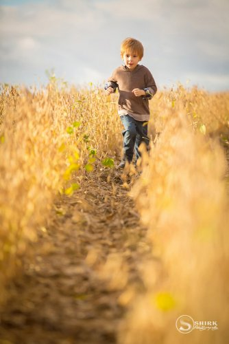 Shirk-Photography-Family-Portraits-Iowa-Creative-Son-Fall-Bean-Field