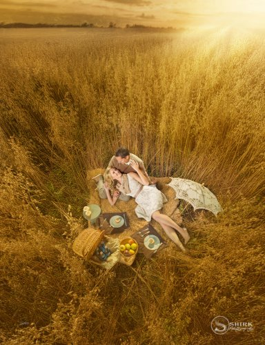 Shirk-Photography-Family-Portraits-Iowa-Creative-Tall-Grass-Engagement-Sunset-Field