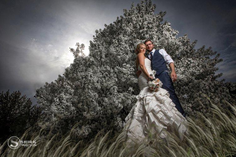Shirk-Photography-Portraits-Iowa-Creative-Couples-Wedding-Flowering-Tree